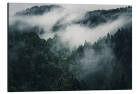 Aluminium print  Mystic forests in fog - Oliver Henze