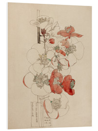 Foam board print  Japonica - Charles Rennie Mackintosh