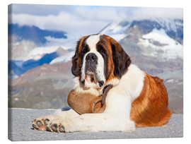 Canvas print  Saint Bernard rescue dog