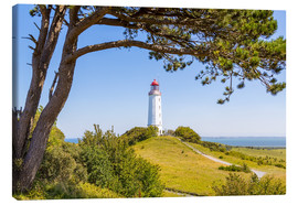 Canvas print  lighthouse Dornbusch at Hiddensee