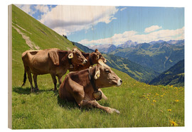 Wood print  Cows relax on the mountain