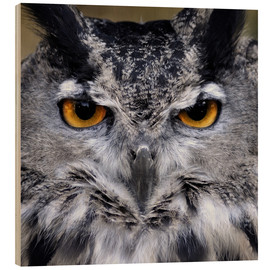 Wood print  Great Horned Owl
