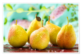 Premium poster  Five pears - K&L Food Style