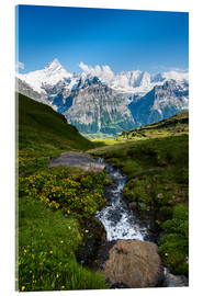 Acrylic print  Mountain panorama with Schreckhorn and Fiescherhorn  View from First, Grindelwald, Switzerland - Peter Wey