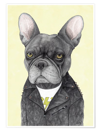 Premium poster  Hard Rock French Bulldog - Barruf