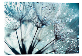Acrylic glass  Dandelion blue art - Julia Delgado