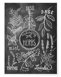 Premium poster  Herbs - Lily & Val