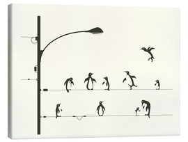 Canvas print  PENGUINS ON A WIRE - Jazzberry Blue