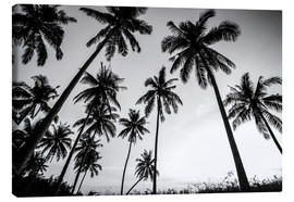 Canvas  Silhouettes of palm trees