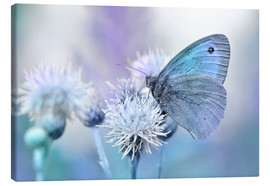 Canvas print  Butterfly blue - Atteloi
