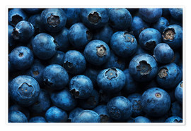 Premium poster Blueberries