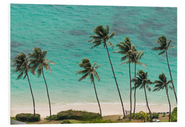 Foam board print  Palm Trees in front of the turquoise Ocean - Markus Ulrich