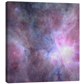 Canvas print  The Purple Density Of The Universe - Barruf