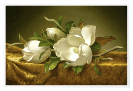 Premium poster  Magnolias on Gold Velvet Cloth - Martin Johnson Heade