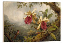Wood print  Orchids and hummingbird - Martin Johnson Heade