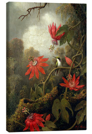 Canvas print  Hummingbird and Passionflowers - Martin Johnson Heade