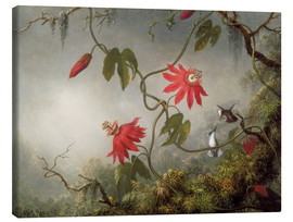 Canvas print  Hummingbird on a Passionflower - Martin Johnson Heade
