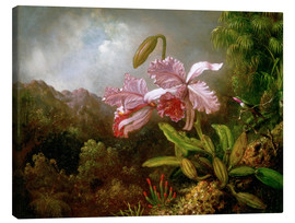 Canvas print  Orchids in a Jungle - Martin Johnson Heade