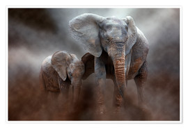Premium poster  Elephant with baby - Peter Roder