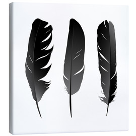 Canvas print  Three feathers