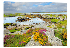 Acrylic print  Ireland Landscape with wild flowers