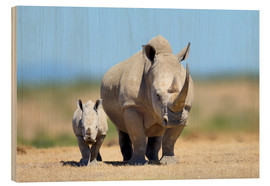 Wood print  White rhinoceros with young in Kenya, Africa