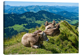 Canvas print  Cattle near Oberstaufen in the Allgäu - Katja Kreder
