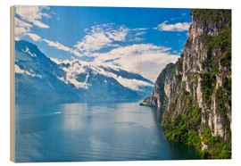 Wood print  Summer view over of lake Garda in Italy