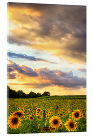 Acrylic print  distant view - Bettina Dittmann