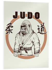 Acrylic glass  Judo Art
