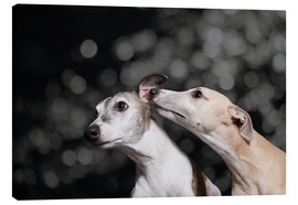 Canvas print  Whippet friends - Heidi Bollich
