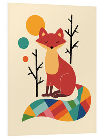 Foam board print  Rainbow Fox - Andy Westface