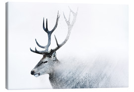Canvas print  Oh Deer - Emanuela Carratoni