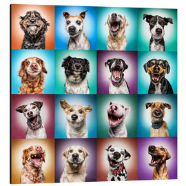 Aluminium print  More funny dog faces - Manuela Kulpa