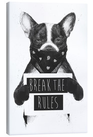Canvas print  Break the rules, rebel dog - Balazs Solti