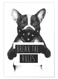 Premium poster  Break the rules, rebel dog - Balazs Solti