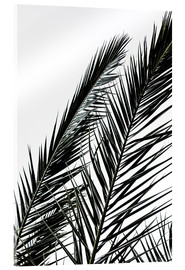 Acrylic glass  Palm Leaves - Mareike Böhmer Photography