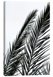 Canvas  Palm Leaves - Mareike Böhmer Photography