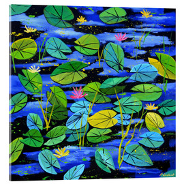 Acrylic print  Water lilies in the pond - Pol Ledent