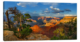 Canvas  Grand Canyon Idyll - Michael Rucker