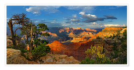 Premium poster  Grand Canyon Idyll - Michael Rucker