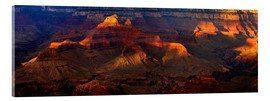 Acrylic print  Grand Canyon insight - Michael Rucker