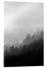 Acrylic print  Misty mornings - Mareike Böhmer Photography