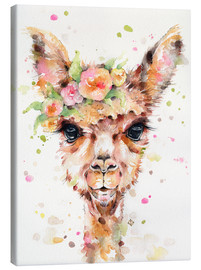 Canvas print  Little llama - Sillier Than Sally