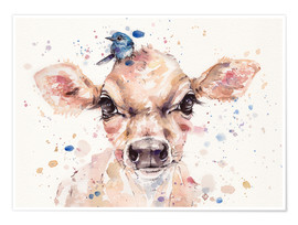 Poster Little Calf (baby cow)