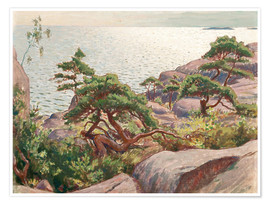 Premium poster  Landscape with pine trees - Väinö Blomstedt