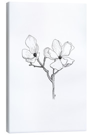 Canvas print  Magnolia - Julia Bruch