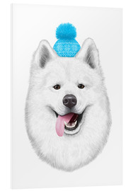 Foam board print  Samoyed with bobble hat - Valeriya Korenkova