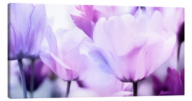 Canvas  pastel pink purple tulips - Lichtspielart