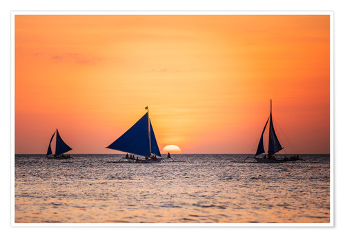 Premium poster Sailboats in the sunset